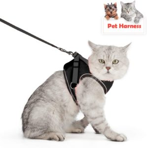 Best cat harness and leash escape proof
