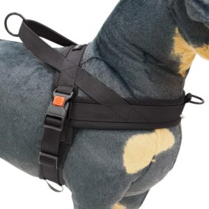 Best cat harness for air travel